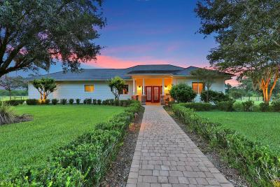 New Smyrna Beach Single Family Home For Sale: 4055 High Ridge Drive