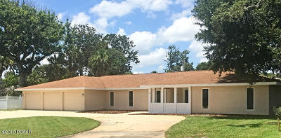 Ormond Beach Single Family Home For Sale: 33 Sandcastle Drive