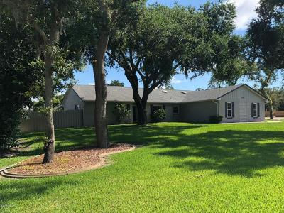 Port Orange Single Family Home For Sale: 765 Taylor Road