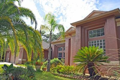 New Smyrna Beach Single Family Home For Sale: 2830 Conway Road