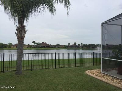 New Smyrna Beach Single Family Home For Sale: 557 Caro Court