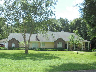 Deland Single Family Home For Sale: 1025 N Ridgewood Avenue