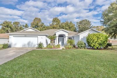 Port Orange Single Family Home For Sale: 1303 Shadow Path Drive