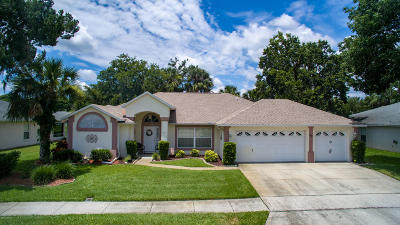 South Daytona Single Family Home For Sale: 142 Deskin Drive