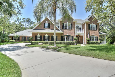 Ormond Beach Single Family Home For Sale: 6 Double Branch Way