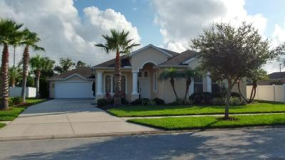 New Smyrna Beach Single Family Home For Sale: 625 Marisol Drive