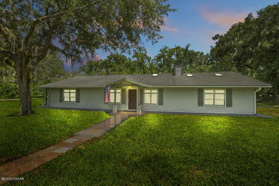 New Smyrna Beach Single Family Home For Sale: 2440 Selleck Avenue