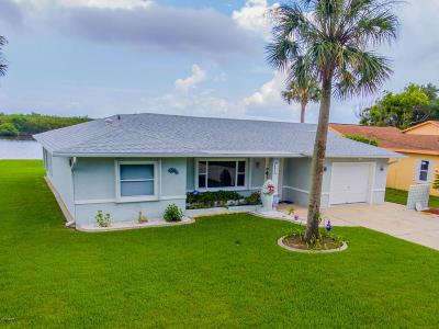 Port Orange Single Family Home For Sale: 5817 Riverside Drive
