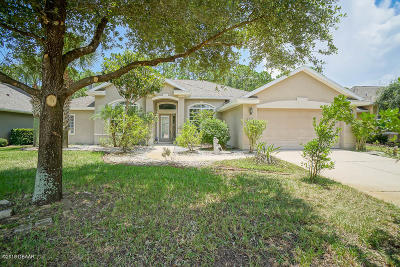 Ormond Beach Single Family Home For Sale: 1317 Harwick Lane