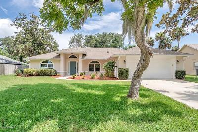 Port Orange Single Family Home For Sale: 489 Oakland Park Boulevard