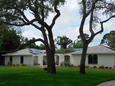 Port Orange Single Family Home For Sale: 707 E Hensel Hill Road
