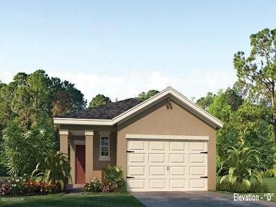 New Smyrna Beach Single Family Home For Sale: 2907 Taton Trace