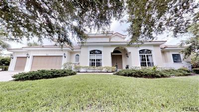 Palm Coast Single Family Home For Sale: 73 Ocean Oaks Lane