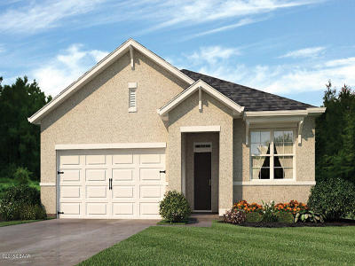 Port Orange Single Family Home For Sale: 5319 E Sandpine Haven Lane