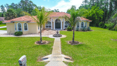 Palm Coast Single Family Home For Sale: 44 Burning Ember Lane