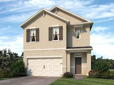New Smyrna Beach Single Family Home For Sale: 2815 Taton Trace