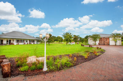New Smyrna Beach Single Family Home For Sale: 1711 Martin Dairy Road