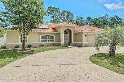 Palm Coast Single Family Home For Sale: 11 Pinto Lane