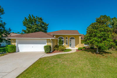 Palm Coast Single Family Home For Sale: 14 Coleridge Court