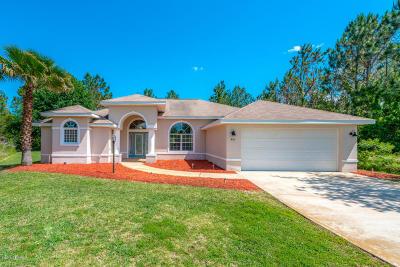 Palm Coast Single Family Home For Sale: 44 Leidel Drive