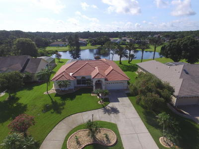 Port Orange Single Family Home For Sale: 6363 Fairway Cove Drive