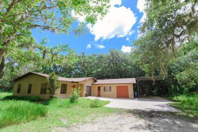 New Smyrna Beach Single Family Home For Sale: 2397 Pioneer Trail