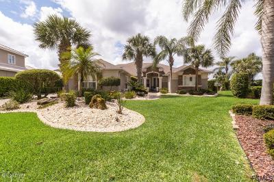 Palm Coast Single Family Home For Sale: 3 Caitlin Court