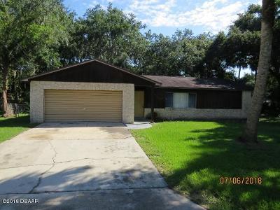 Volusia County Single Family Home For Sale: 114 Camino Circle