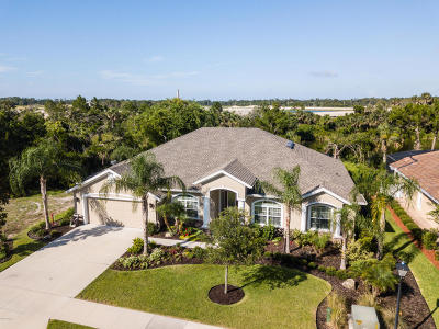 Palm Coast Single Family Home For Sale: 196 Heron Drive