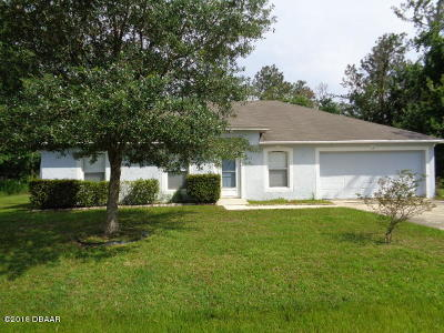 Palm Coast Single Family Home For Sale: 4 Kale Court