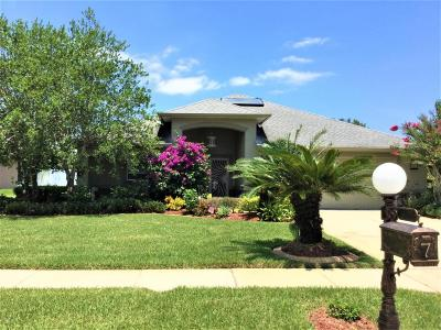 Ormond Beach Single Family Home For Sale: 7 Peruvian Lane