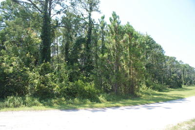 Volusia County Residential Lots & Land For Sale: Roosevelt Boulevard