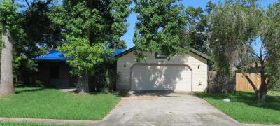 Port Orange Single Family Home For Sale: 956 Tall Pine Drive