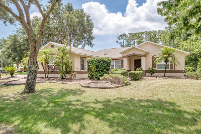 Port Orange Single Family Home For Sale: 1166 Southwinds Drive