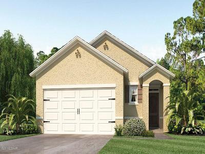 New Smyrna Beach Single Family Home For Sale: 2913 Taton Trace