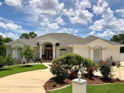 Palm Coast Single Family Home For Sale: 50 Cormorant Court