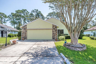 Volusia County Single Family Home For Sale: 121 S Gull Drive