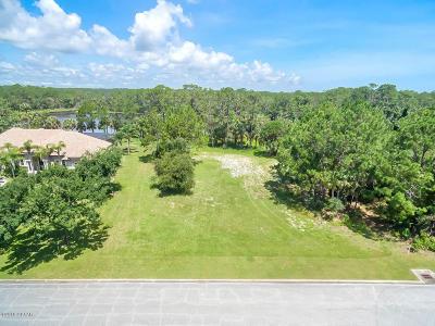 Volusia County Residential Lots & Land For Sale: 216 Vista Della Toscana