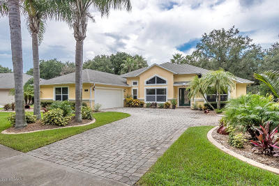 Port Orange Single Family Home For Sale: 4205 Mayfair Lane