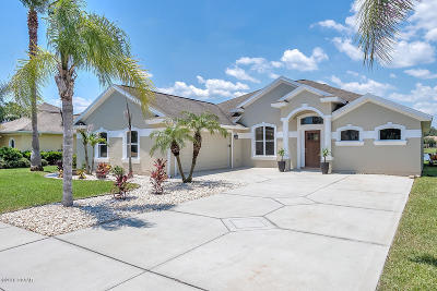 New Smyrna Beach Single Family Home For Sale: 3610 Marisol Court