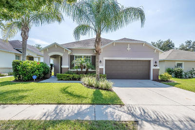 New Smyrna Beach Single Family Home For Sale: 627 Aeolian Drive