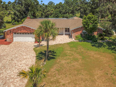 Ormond Beach Single Family Home For Sale: 51 S St Andrews Drive