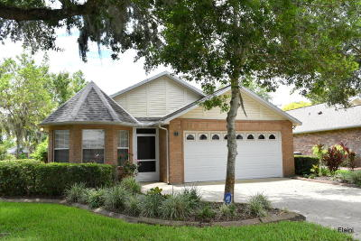 Ormond Beach Single Family Home For Sale: 4 Reflections Village Drive