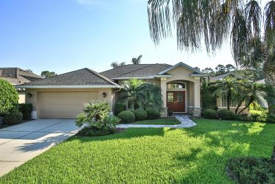 Ormond Beach Single Family Home For Sale: 1291 Royal Pointe Lane