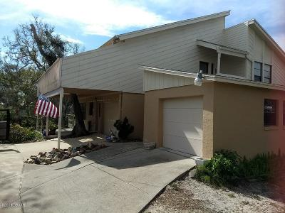 New Smyrna Beach Single Family Home For Sale: 4152 Michigan Avenue