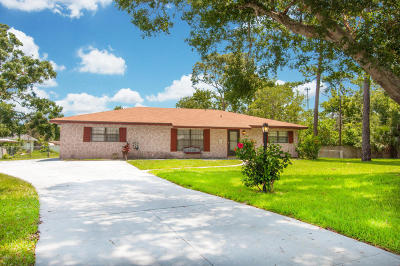 Port Orange Single Family Home For Sale: 215 Leisure Circle