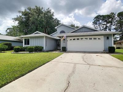 Ormond Beach Single Family Home For Sale: 34 Treetop Circle