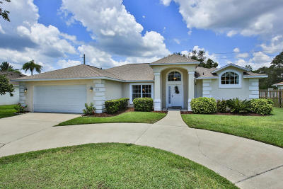 Port Orange Single Family Home For Sale: 5968 Sawgrass Point Drive