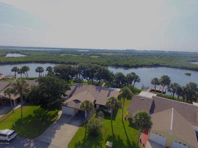 Volusia County Attached For Sale: 1244 Harbour Point Drive