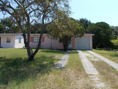 New Smyrna Beach Single Family Home For Sale: 2911 Saxon Drive